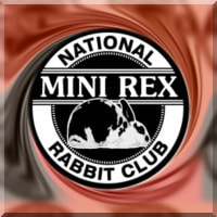 THE NATIONAL MINI REX CLUB - WELCOME